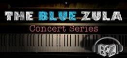 蓝色ZULA音乐会(The Blue Zula VR Concert Series)