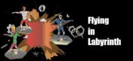 在迷宫中飞行(Flying in Labyrinth)