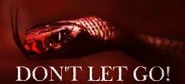 别放手(Don't Let Go!)
