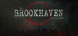 布鲁克海文实验(The Brookhaven Experiment)